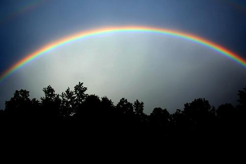 rainbowspecial