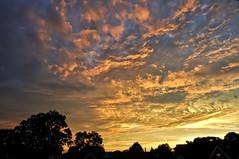 The calm after the storm Toronto Sky (Mary Zahran) Tags: sunset sky sun toronto ontario storm tree weather clouds nikon rooftops calm tornado 18200 d90 skyascanvas abovealltherest maryzahran august202009