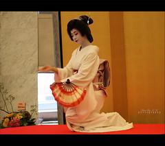 Geiko  'Miyoharu' (Marie Eve K.A. (away..)) Tags: portrait woman beauty face japan lady hair kyoto maiko geiko geisha   kimono gion elegant soe elegance ochaya miyagawacho hanamachi    geigi  japanesearts  miyoharu flickrdiamond   iloveflickrfriends