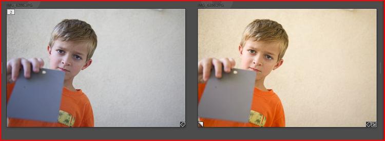 gray card 2