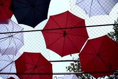 Plouen paraigües (Joan Garcia i Silano) Tags: barcelona umbrella spain europe catalonia catalunya paraguas 2009 merce paraigues