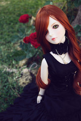 Rowan - DOT Shall (-Poison Girl-) Tags: black green rose garden ginger eyes doll coat dot redhead sd bjd brunette poison dollfie superdollfie rowan eileen mayfair poisongirl shall fer qipao chinesedress dreamofdoll balljointeddoll ashlar lahoo dotshall dotlahoo blackfer dodshall rowanmayfair dodlahoo