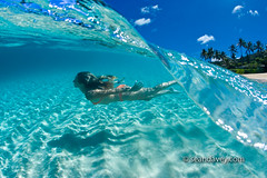 Aqua Dive (Sean Davey Photography) Tags: color horizontal seandavey finephotographyart photographersfineart oceanunderwaterhawaiiunderwatertransparentwaterclearoceancleanoceanseapeacefulpeacefulnessserenityfreedomfreeglidingcalmcalmingcarefreedreamyinharmonyinharmonywithnaturecolorfulenvironmentgreennaturaln