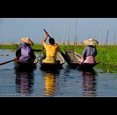 In the floating gardens - Inle Lake - Myanmar (Lucie et Philippe) Tags: lake garden women burma floating myanmar inle birmanie topseven mygearandmepremium mygearandmebronze mygearandmesilver mygearandmegold mygearandmeplatinum