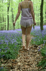 The path (sosij) Tags: trees leaves bluebells morninglight woodlands purple path barefoot hertfordshire sharoncooper