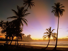 From the Archives (Winsome J M) Tags: ocean vacation beach water sunrise palms tropical caribbean rays tobago coconuttrees westindies ultimateshot windydear