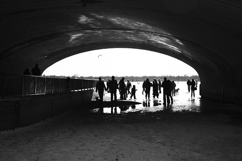Under the Bridge 8995