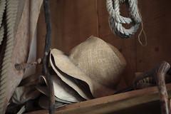 cappelli (S amo) Tags: italy hat cowboy italia hats tuscany chapeau chapeaux tradition toscana toscane italie cappello maremma alberese cappelli réserve gardian buttero butteri reservenaturelle etrusque paololivornosfriends maremme