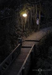 Bosque Alemo / Curitiba - PR (KTSFotos) Tags: bridge light brazil luz brasil night memorial ponte curitiba german bosque noite r1 holt kiyoshi alemo sonydscr1 ktsfotos