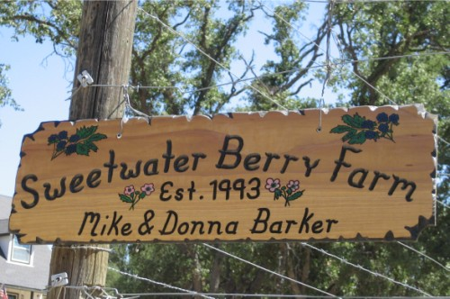 Sweetwater Berry Farm