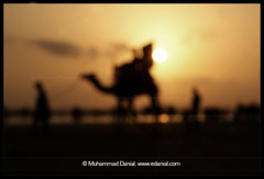Perceptions - Blurred Memory (Danial Shah) Tags: pakistan sunset sea beach blurred camel memory danial arabian karachi clifton sindh perceptions edanial muhammaddanialshah