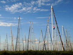 harbour (Rori mails) Tags: haven zeilen sailing harbour sailboats masts ijsselmeer zeilboten masten lelystadhaven