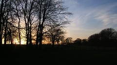 Sunset at Coombe Country Park (allyhook) Tags: nature coventry lovecov