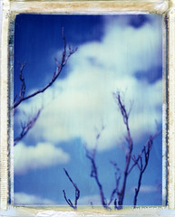 (moominsean) Tags: blue autumn arizona clouds polaroid cool skies fluffy dreams jerome 190 packfilm iduv outwithsolexposure expired022008