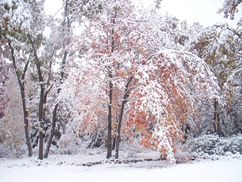 Still snowing - oct 2009