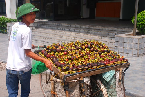 mangosteen seller