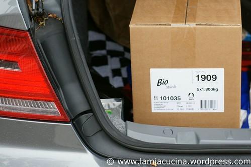 CH-6072 Sachseln 1_2011 06 07_4120