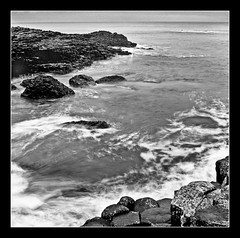 Giants Causeway, Ireland (patrickMphotography) Tags: ireland 6x6 film mediumformat landscape fuji rodinal giantscauseway acros 500cm hassy