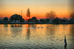 Atardecer en Parla HDR. (liver---) Tags: madrid espaa sol contraluz lago atardecer agua barco arboles oliver nieve reflejo frio oli patos parla