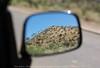 Mirror series: Thar desert (Ameer Hamza) Tags: sky mountain reflection classic mirror side sharp sidemirror suzuki alto thar ppo ppc karachiwalla kpc vxr mirrorview wonderfulshot kpg pakistaniat sindhsindhi pakistanicar suzukimodel pakistanmade thardesertviews ಥಾರ್ ಮರುಭೂಮಿ