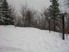 Wolf Trail bench