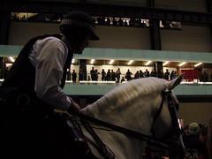 Police at the Tate (willskii) Tags: horses london art gallery cops tate authority police tatemodern mounted horseback turbineroom authoritarian