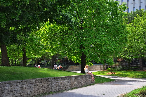 Waterloo University @summer