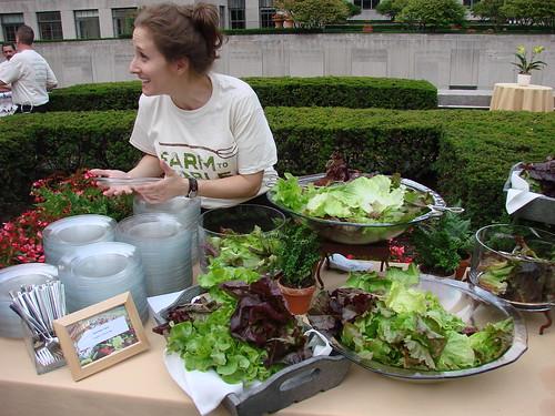 Lettuce Bar