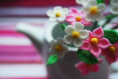 Sweet Sugar Flower Toppers (ncakes) Tags: sugar toppers