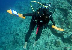 Manta Diver, Okinawa Japan