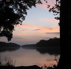 Summer Evening ([-Sherri-]) Tags: sunset tree water river virginia tramonto purple fiume va potomac sterling albero acqua sherri laqua leau naturepoetry explore258 holidaysvacanzeurlaub sbystrow