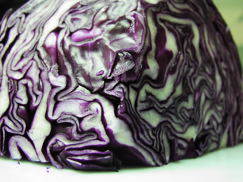 Cabbage Rorshach II