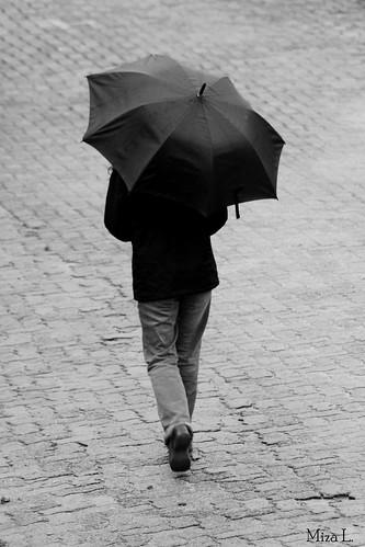 Dia de chuva...