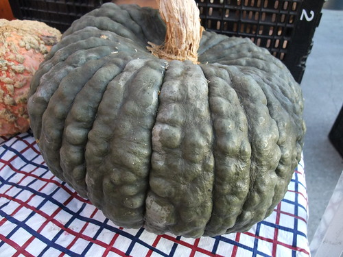 Pumpkin from Persinger Farms
