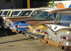 1959 Chevrolets (dave_7) Tags: old classic cars chevrolet car sedan wagon lights rust tail rear rusty 59 1959 chevrolets ccars
