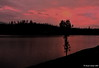 Broken Palette... (Naseer Ommer) Tags: sunset india colors canon tamilnadu valparai naseerommer canoneos40d canon40d canon1224mm