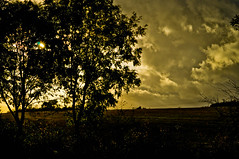 Sun is Shining.... (Chris H#) Tags: autumn trees sunshine clouds northamptonshire fields bobmarley stormyweather s3000 brixworthcountrypark sunisshining pitsfordresevoir stormcloudsbuilding nikond5000 sunbreakingthroughthetrees justbeforeitpouredwithrain overthefieldsandfaraway