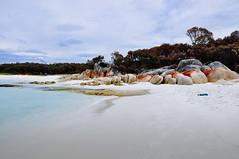 bay of fires (Qu Jiang) Tags: beach bay australia tasmania aussie d90