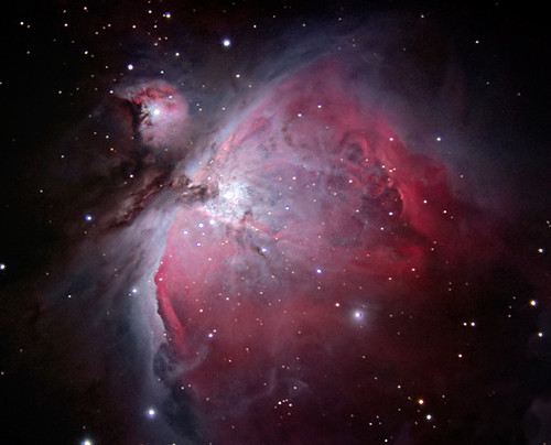 The Great Orion Nebula (M42) / Thomas Shahan