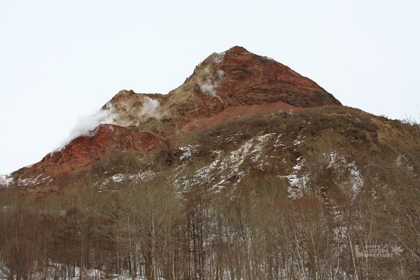 2009北海道-D2-5-昭和新山熊牧場_07.jpg