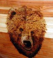 bear burn