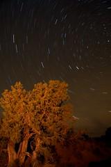 2008-10-22__MG_7858_b (SC Williams) Tags: arizona lightpainting night stars monumentvalley startrails huntsmesa