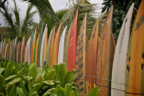 Surf Board Fence on Maui