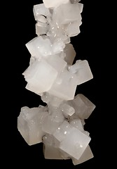 home grown salt crystals (ohrfeus) Tags: crystal salt kristall nacl salz msh0409 msh04095
