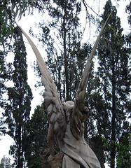 Eternidad_2 (Bellwizard) Tags: barcelona cemetery graveyard angel cementerio montjuc ngel cementiri ngel