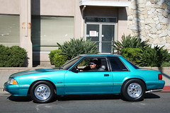 FORD MUSTANG 5.0 LX FOXBODY COUPE (Navymailman) Tags: show california park green ford car berry body farm fox trunk forever mustang fabulous 2009 coupe fords calypso knotts notch fff buena notchback stang fabulousfordsforever foxbody foxbodymustang