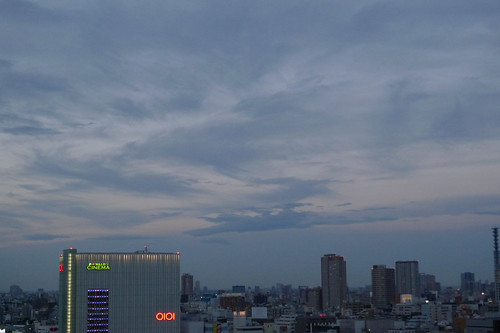 shinjuku and the darkening sky