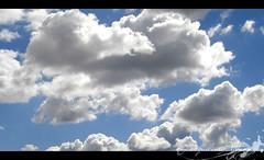 The Simpsons Sky (Jack Venancio) Tags: sky céu nuvens ossimpsons