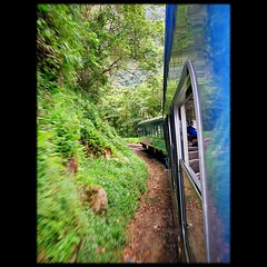 Train ride from Cusco to Machu Picchu (Now and Here) Tags: trip travel blue trees mountain green peru window machu picchu inca cuzco turn forest train canon cloudy fb stones cusco hill tracks rail ground move per powershot inka explore motionblur traincar curve machupicchu 65 a85 mostviewed trainride zoomblur perurail traininterior canonpowershota85 view500 fave10 aroundbend fave50 fave25 nowandhere