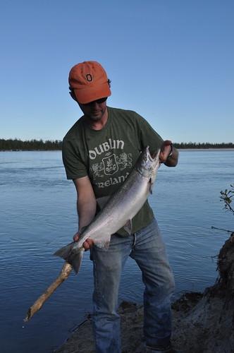 McArthur River Coho salmon